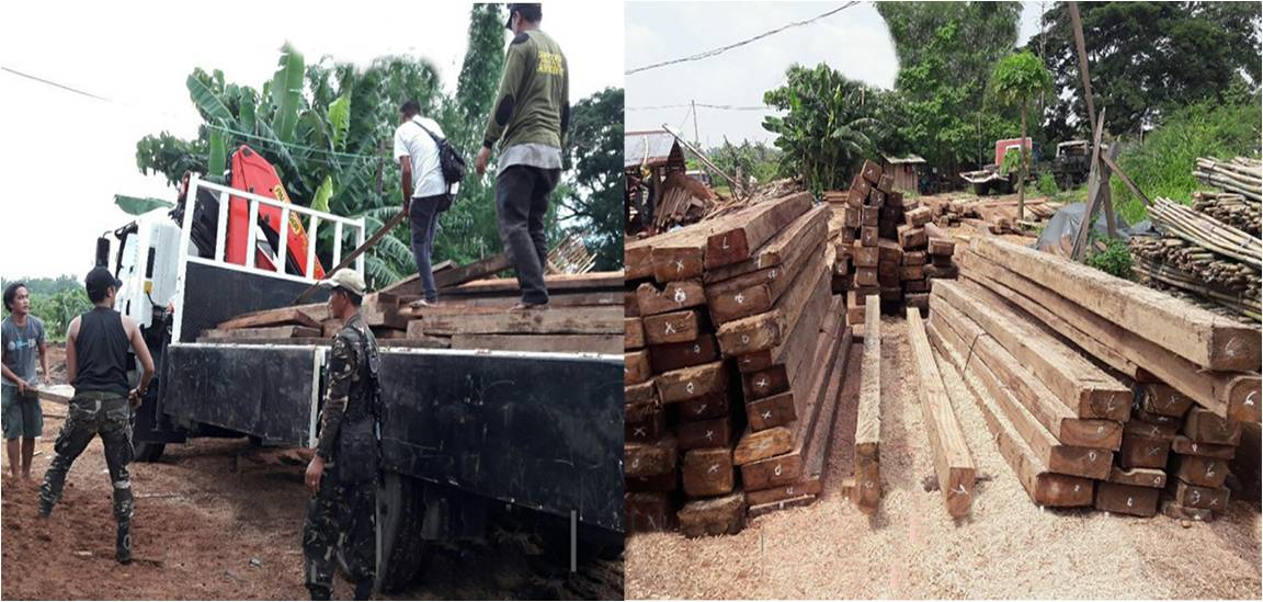 DENR SEIZES ILLEGALLY CUT LUMBER IN N. ECIJA