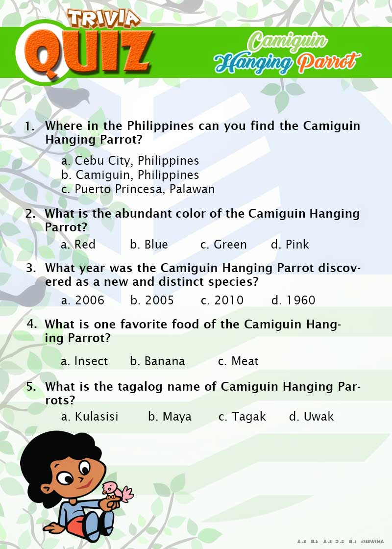 Camiguin Hanging Parrot Quiz page 4