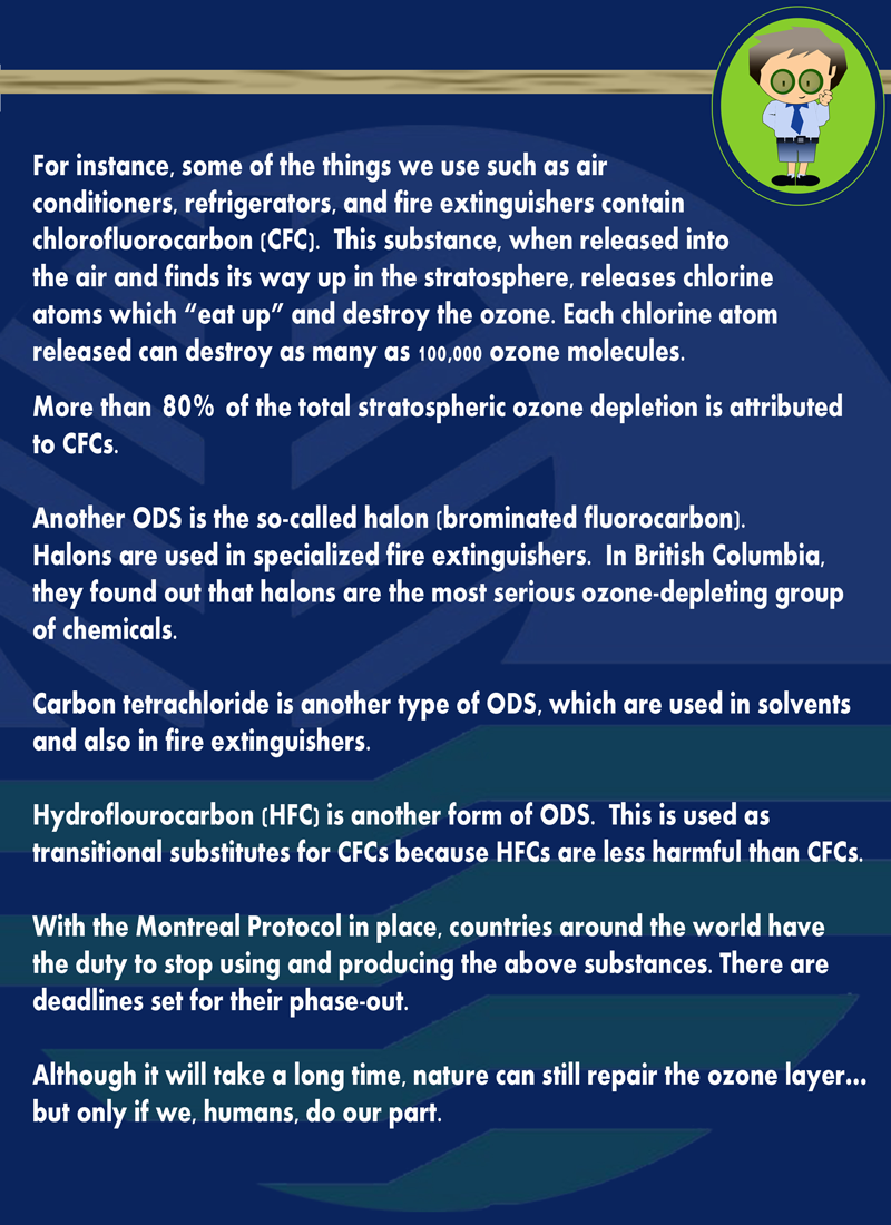 OZONE LAYER PAGE3 web